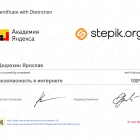 stepik-certificate-191-497b51f(1)